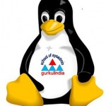 Ten most frequently used Linux networking services, in enterprise unix networks